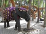 Слон в саду горшков
